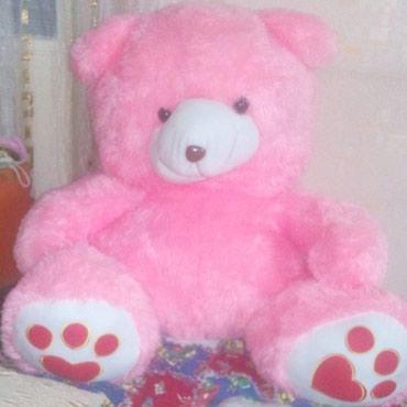 Медведь в Токмак