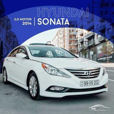 anbarın icarəsi - Azərbaycan: Kirayə verirəm:   Hyundai, Lexus