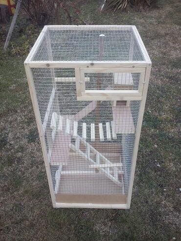 Kućne ptice | Srbija: KAVEZ JE NOVizrada kaveza po meri i zelji kavez ima fioku za lakse
