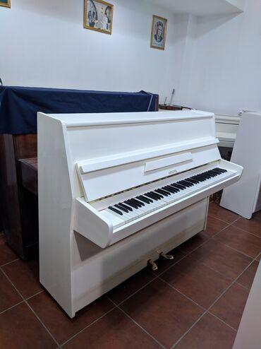 avto verirəm - Azərbaycan: Bakida-Gəncədə Fil Dişi rənq pianolar