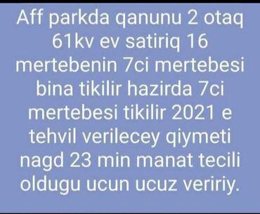 jako-papuqay-satilir - Azərbaycan: TECILI SATILIR. Unvan Yasamal & Lamie