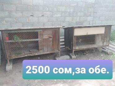 Другие животные - Кыргызстан: Клетки.За обе 2500 сом.Торг