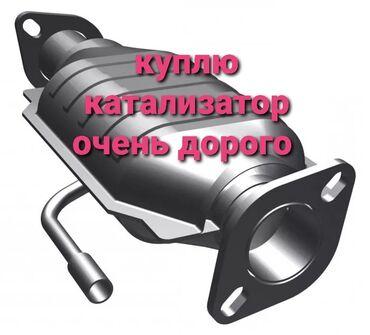 купить кота в бишкеке в Кыргызстан: Катализатор скупка катализатор прием катализатор куплю катализатор