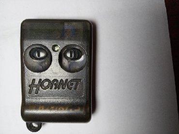 пульт дистанционного управления на айфон в Кыргызстан: Куплю такой пульт от авто сигнализации Hornet, можно и нерабочий