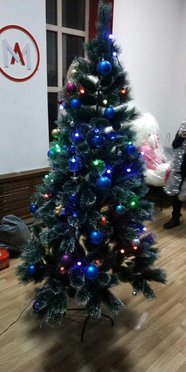 ЁЛКИ! ЕЛКИ! ЕЛЬ! ЕЛКУ! ЁЛКУ! ЕЛКА! в Бишкек