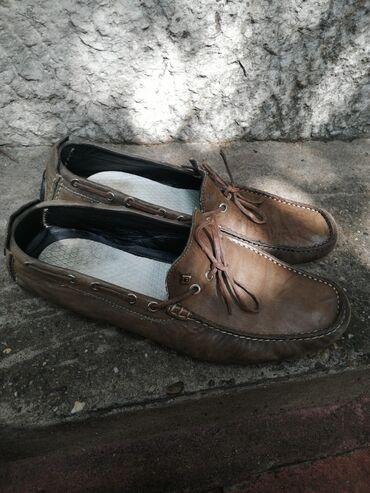 Muška obuća | Batajnica: Muška obuća