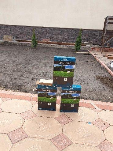 Семена и уличные растения в Кыргызстан: Семена газона  Посев газона  Доставка  От 2кг доставка