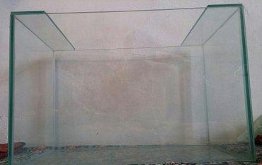 аквариумы. в Бишкек