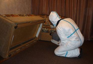 Уничтожение клопов блох тараканов гарантия 6 месяцев. в Токмак