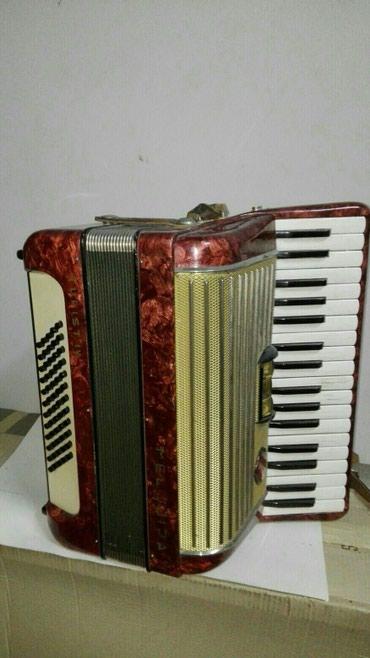 Harmonike | Srbija: Harmonika
