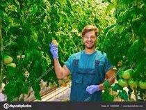 Нужен агроном в компанию «Goldenstar» хорошие условия ,хорошие возможн в Бишкек