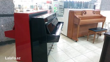 """Bakı şəhərində """"DoReMi"""" - pianino ve royal satış mağazası xidmetinizdedir. Dünya"""