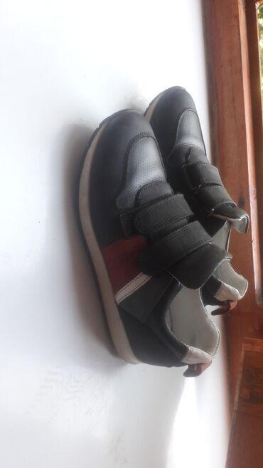 Кроссовки и спортивная обувь - Массы: Кроссовки и спортивная обувь