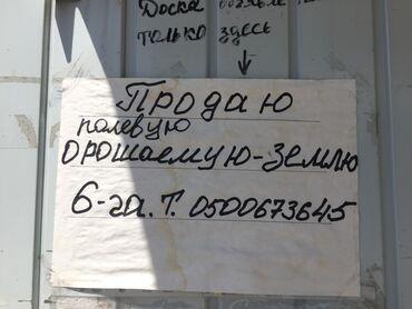 volkswagen 1 6 в Ак-Джол: Продам 6000 соток Для сельского хозяйства от собственника