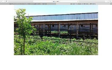 ферму металлическую 7м в Кыргызстан: Продаю дом+ ферму 30 соток в Новопавловке. Имеется все условия для