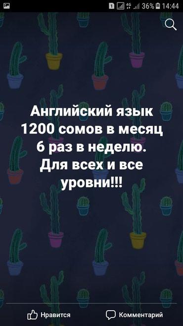 Курсы английского языка 1200 сомов в в Бишкек