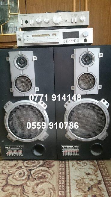 акустические системы polo колонка сумка в Кыргызстан: Колонки 35АС-018 в комплекте с усилителем АМФИТОН 002 и МП 201