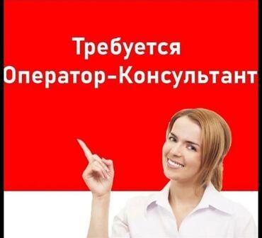 Работа - Кыргызстан: Оператор Call-центра. С опытом. 5/2. Цум