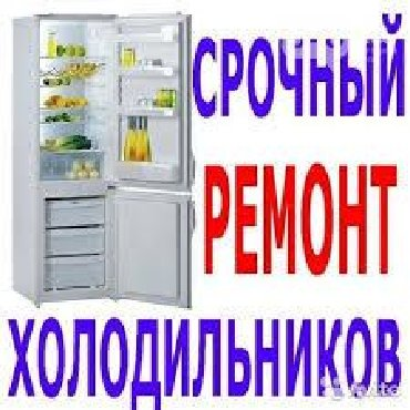 холодильников морозильников в Кыргызстан: Ремонт холодильников морозильников.Любой сложностиРемонт холодильников