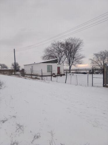 Недвижимость - Дачное (ГЭС-5): 8 соток, Для сельского хозяйства, Собственник