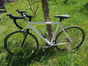 Bicikl - Srbija: Profesionalni bicikl