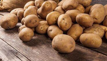 манго фрукт цена бишкек в Кыргызстан: Продаю картофель  Картошка оптом, опт  Сорт Пикассо 10 тонн  Сортиру