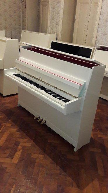 Pianino PETROF Cexya stehsalı. Ideal vəziyyədə. Cadırılma və köklənmə