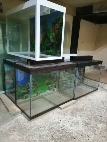 Hazır Akvariumlar 24 litre BAŞQALARİDA VAR SEÇİM COXDU