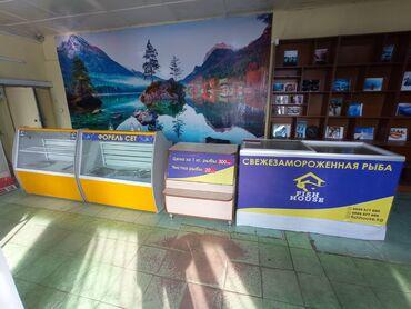 полка для магазина в Кыргызстан: ПРОДАЮ !!! Читать внимательно ! ✓Продаю действующий рыбный бизнес в