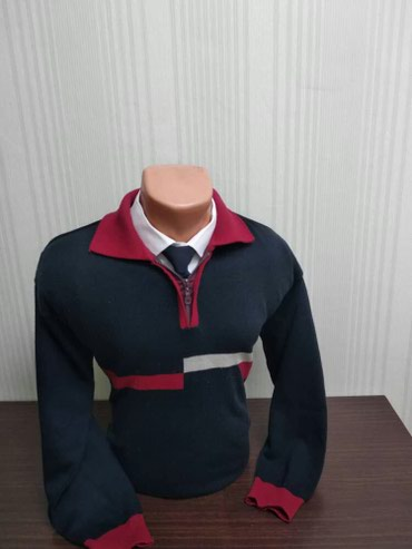 Мужской свитер с воротником и на замке! Размер: 48-50-52 Отдам за 500 в Бишкек