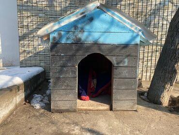 voennyj kung budka в Кыргызстан: Продаётся будка для собаки.Состояние хорошее .В городе ОШ