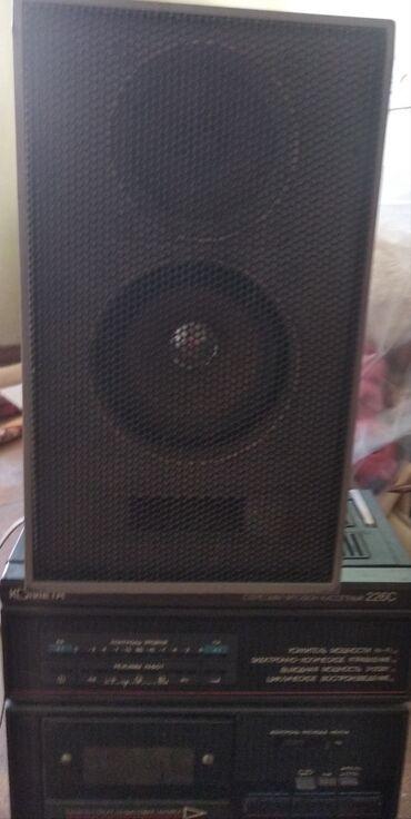 акустические системы колонка сумка в Кыргызстан: Продаю колонки мощность 25 в