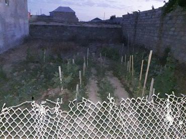 Bakı şəhərində Unvan  Galada torpaq sahesi .. Torpağın ölcüləri 10×17 metr,1,7