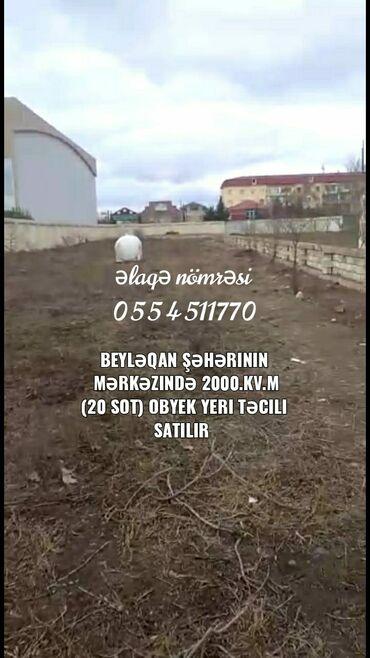 bərdədə torpaq satılır - Azərbaycan: 2000 sot, Biznes üçün, Barter mümkündür, Kupça (Çıxarış)
