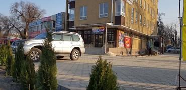 Сдаю офисы по 25-40-80 м2, 4 этаж (отдельный в Бишкек