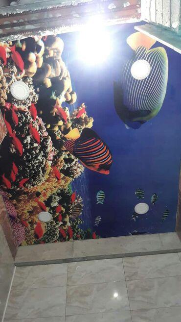 Натяжной потолок экологический чистый любой сложности гарантия качес