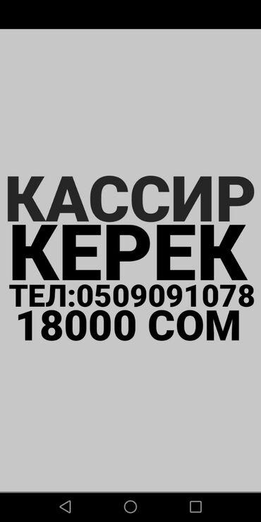 краскопульт в бишкеке в Кыргызстан: Кассир. Без опыта. 5/2