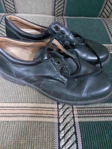 Kozne muske cipele nove
