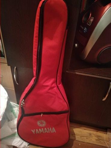 Bakı şəhərində Gitara çantası