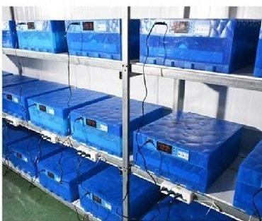 Inkubator inqibator inkibator inqubatorYeni model65 yumurtaliq zavod
