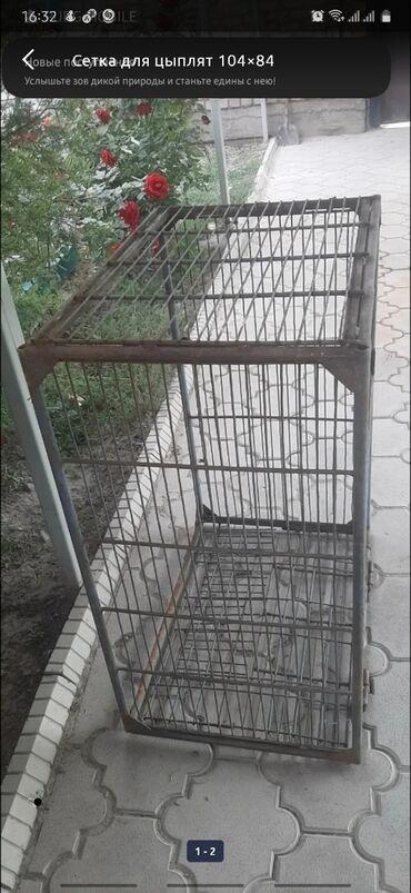 Сетка для цыплят 104×84