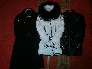 Пальто - Сокулук: Продаю осень-зима-весна пальто фирмы mango,пуховик Турция, курточка