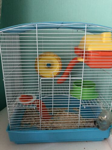 Продаем комплект: клетка с домиком, колесом, кормушкой, горкой
