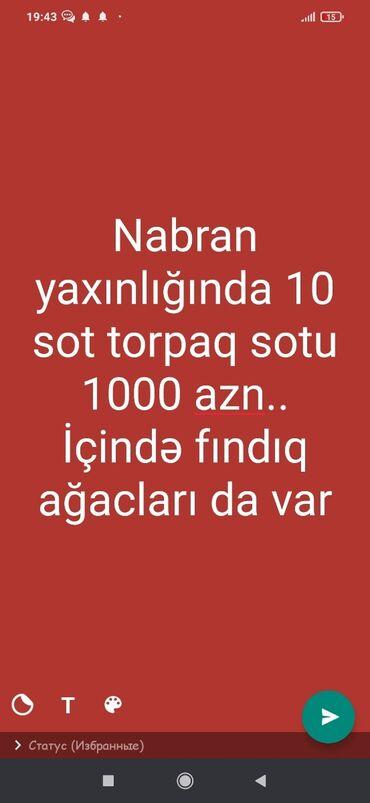 Nabran yaxinliginda 10 sot torpaq