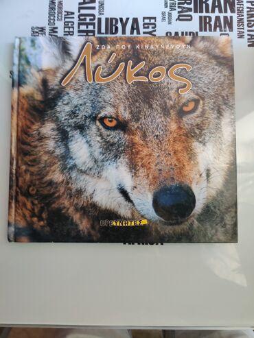 Το βιβλίο Λυκος (ΖΩΑ ΠΟΥ Κινδυνεύουν ΕΡΕΥΝΗΤΗΣ