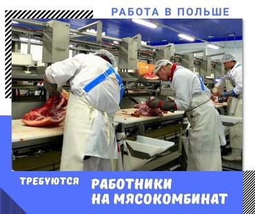 Работа на мясокомбинат в ПольшеУпаковка и сортировка мясаЗнание языков