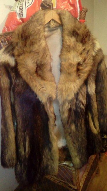 Krzneni kaputi - Smederevo: Pravo krzno, u odličnom stanju, vel. 36_38, kratka bunda, ledja 53 cm