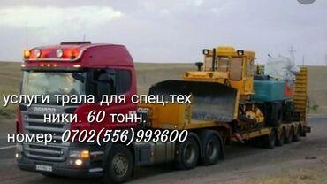 7486 объявлений: Услуги тралла для спецтехники грузоподъёмность 50тонн