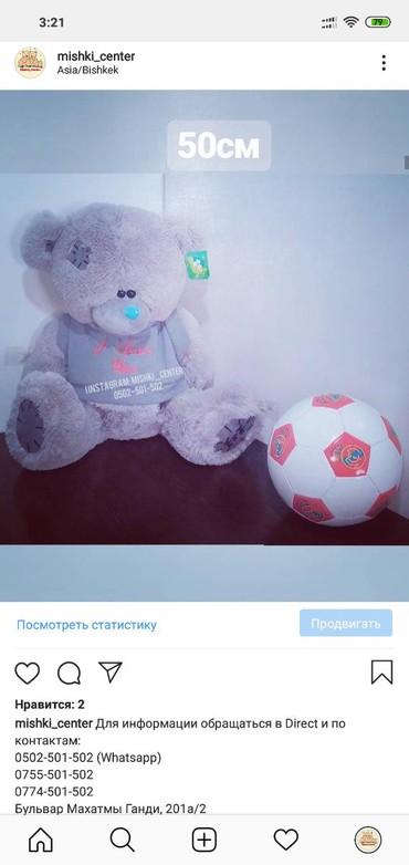 Тедди в Бишкек