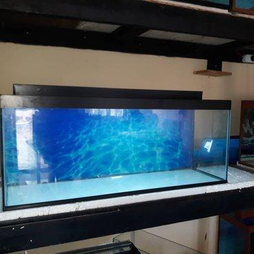Bakı şəhərində Teze 1metrelik akvarium hundurluyu qapaqla 45sm eni 30 sm